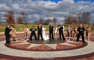 Wedding party at Independence Grove's Millennia Plaza